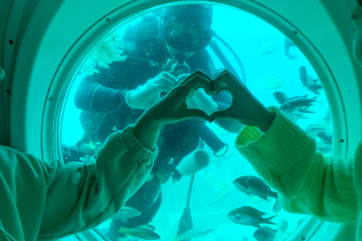 아름다운 해저여행의 추억속으로~